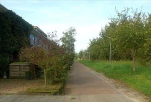 Foto Eetbare Stad Drielanden3